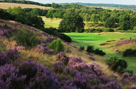 Notts (Hollinwell) Golf Club